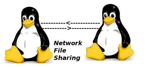 فایل های مهم برای پیکربندی NFS