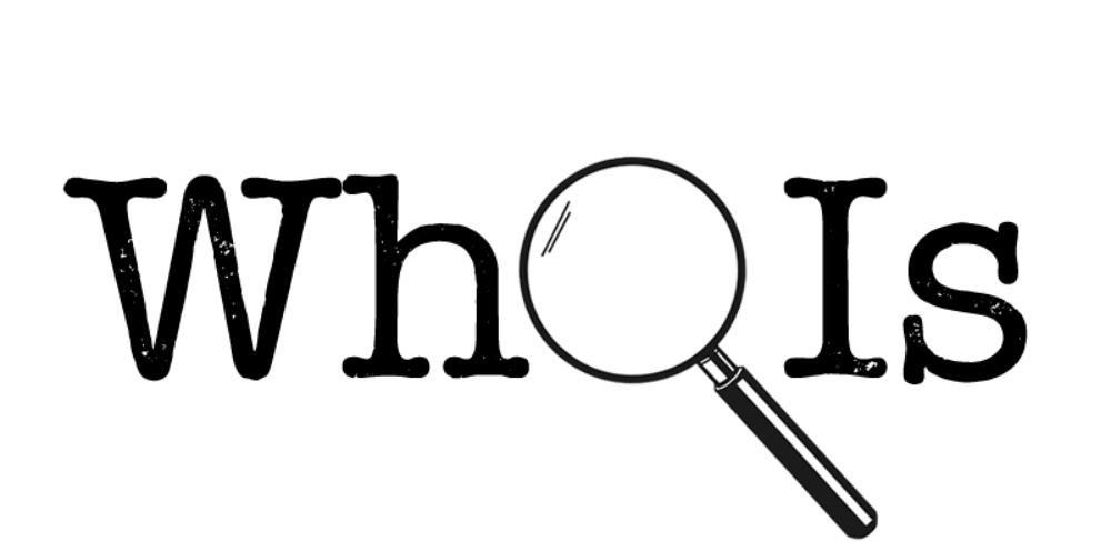 منظور از وضعیت های مختلف Whois یک دامنه چیست